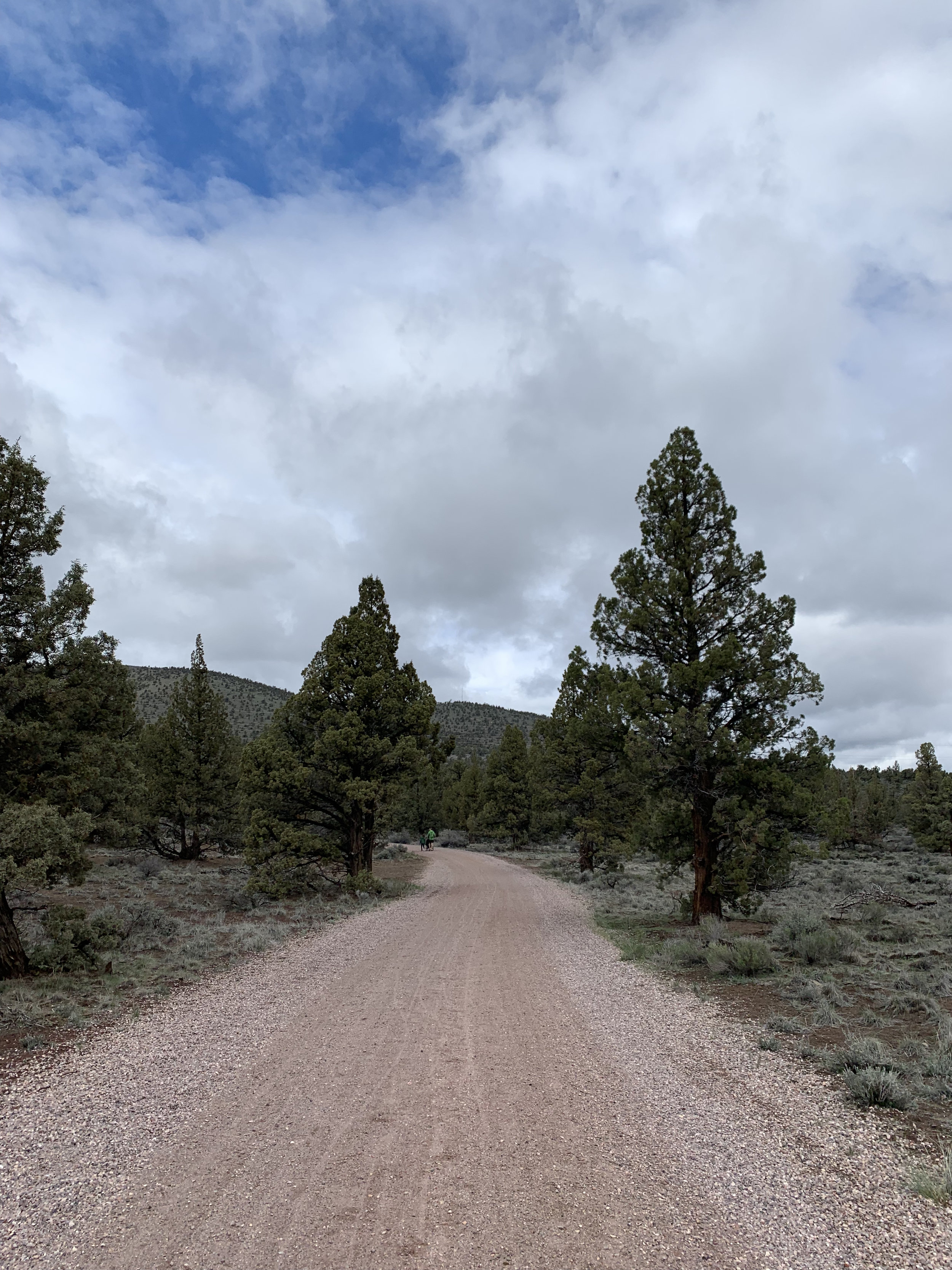 Juniper Trail Hiking at Cline Butte. Stroller Friendly.