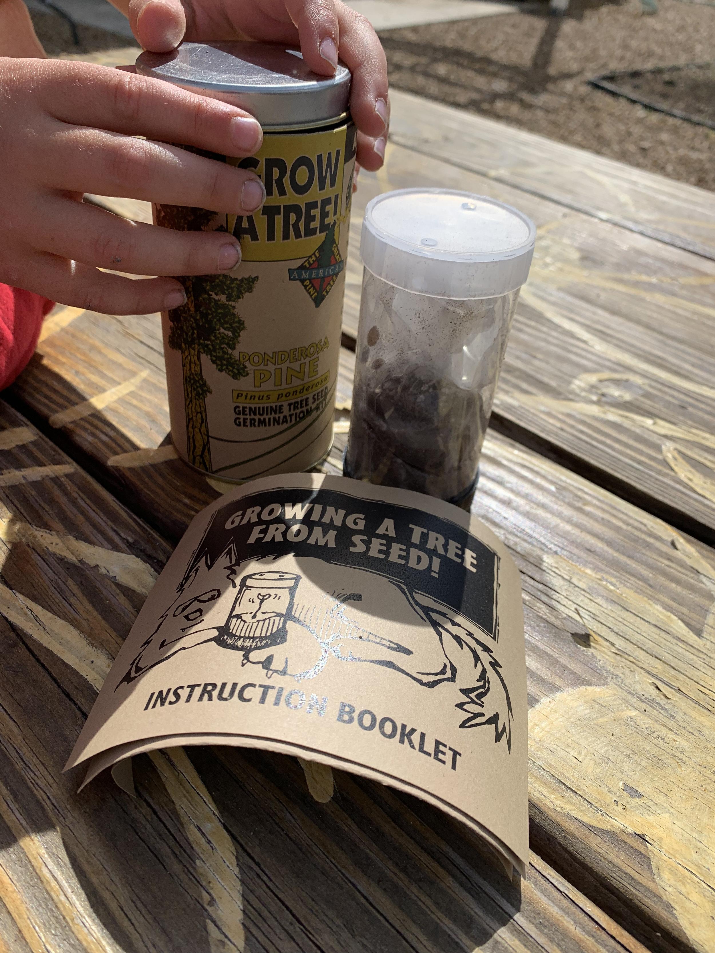 grow a tree kit
