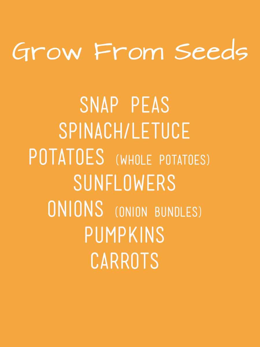 grow from seeds.jpg