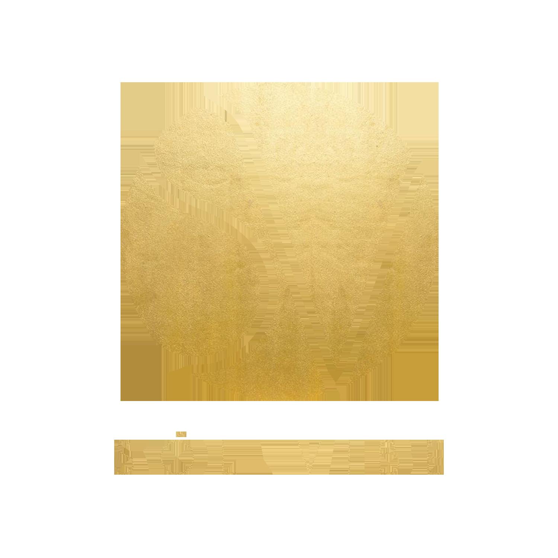 SolVibe-FinalLogo-GoldFoilWithText.png
