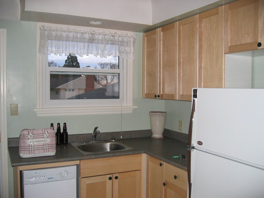 Cedar-Hill-Kitchen-Before-2.jpg