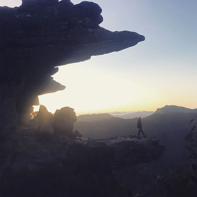 There really isn't much quite as spectacular as sunrise in the Grampians, home to one third of Victoria's native flora. Well worth a visit 💚