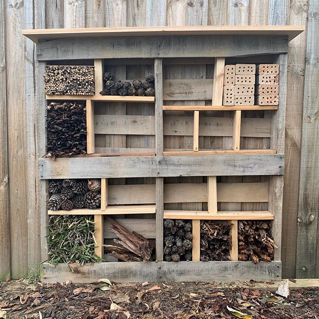 Little bug hotel I've been working on. Or as I like to call it, the 'insect inn'. A home for anything that's teeny tiny.