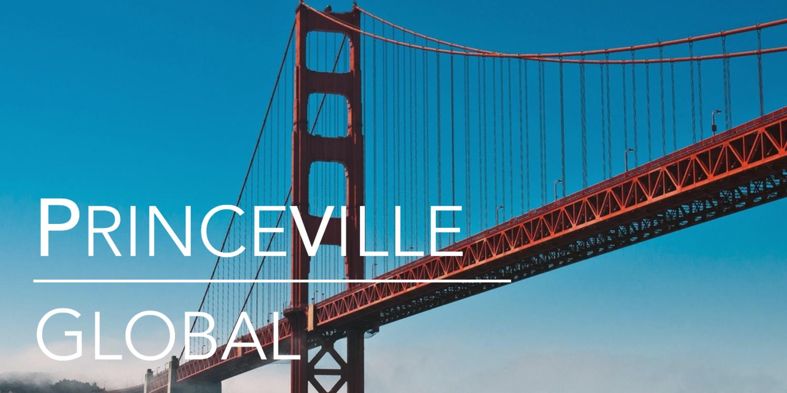 Princeville Global - Social Image.png