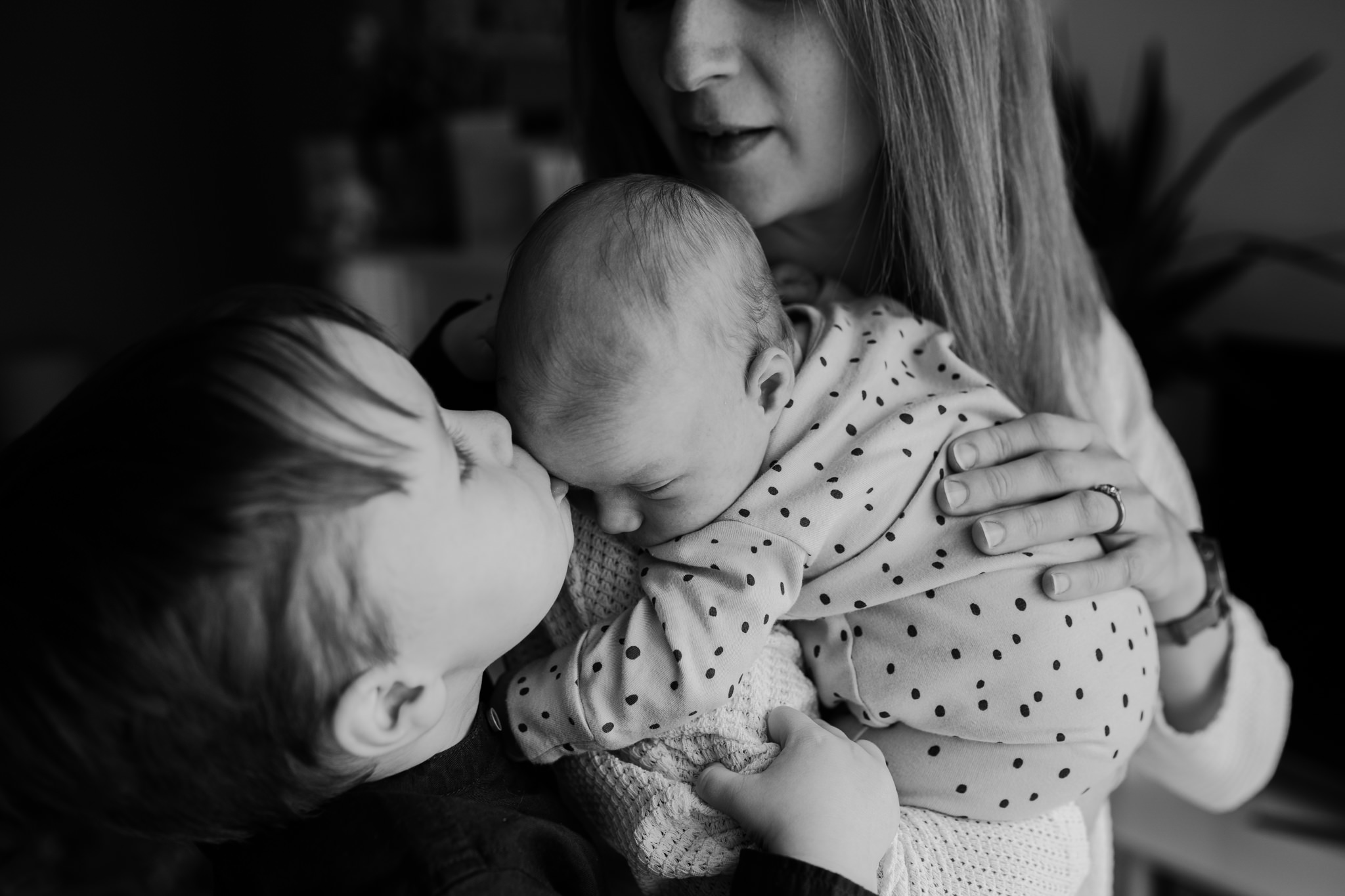 family-photo-session-newborn-photographer-NI