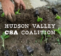 HV CSA Coalition