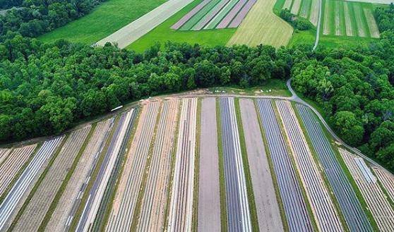 Whole Farm Approach