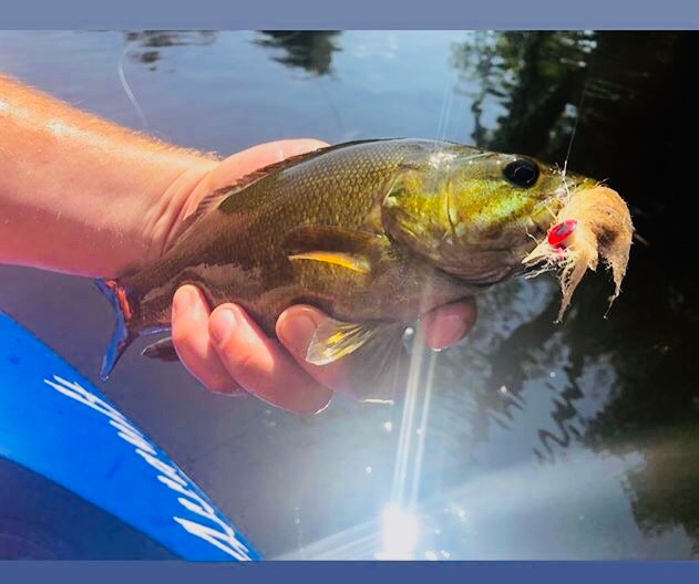 Flying_Fish_Outdoors_Warrensburg_NY Fly_Fishing_Guide.jpg