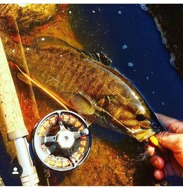 Flying_Fish_Outdoors_Hudson_River_Lake_George_ Fly_Fishing_Guide.jpg