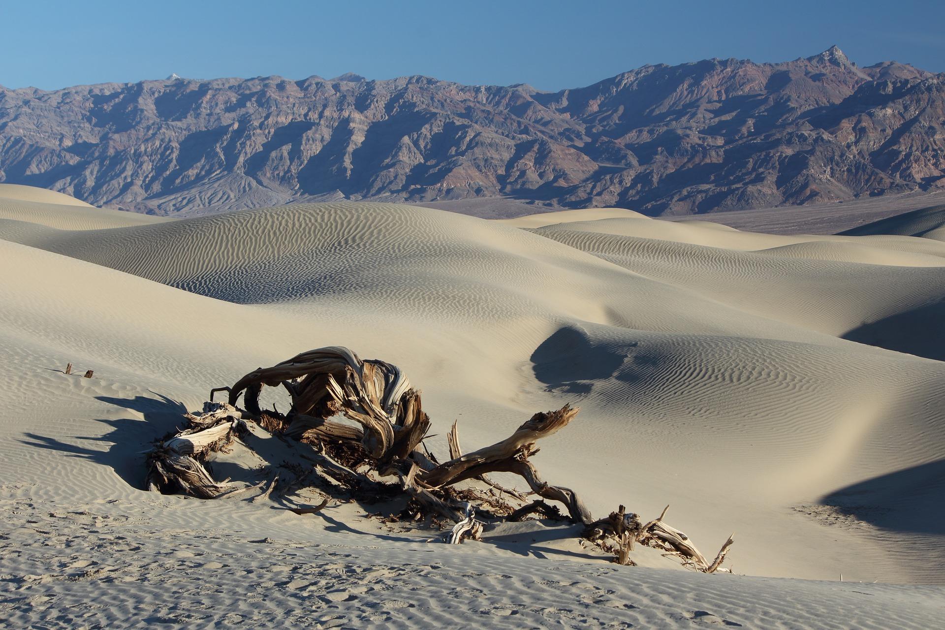 desert-1443127_1920.jpg