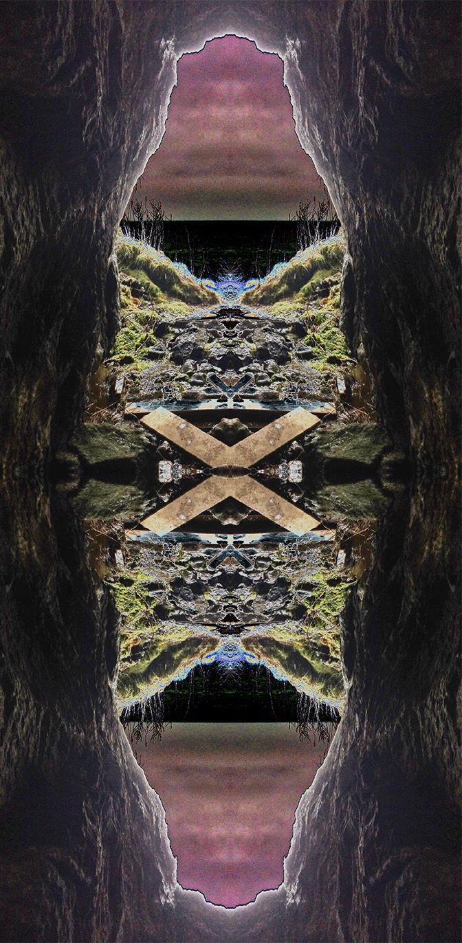 NM474834.395OX Ox, 2016