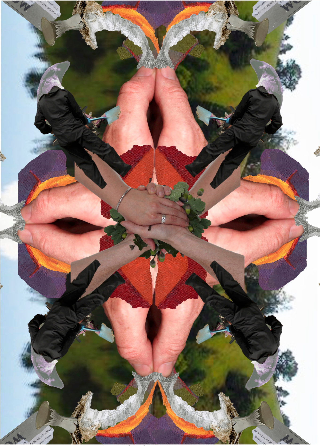 Earth Yule Ox, 2016