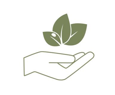Care+Hand+Leaf.jpg