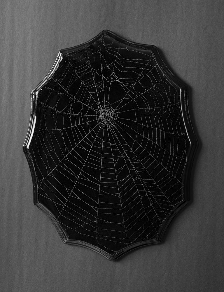 SpiderWeb_201907220001.jpg