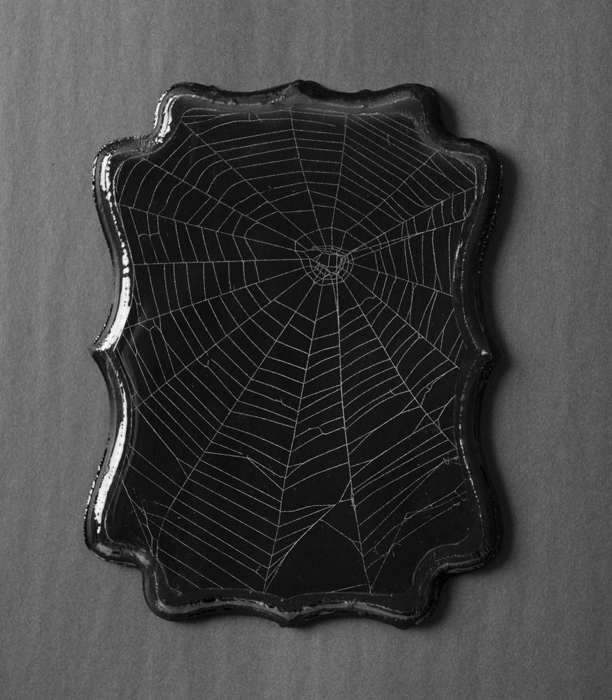 SpiderWeb_201907220010.jpg