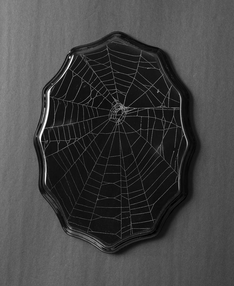 SpiderWeb_201907220009.jpg
