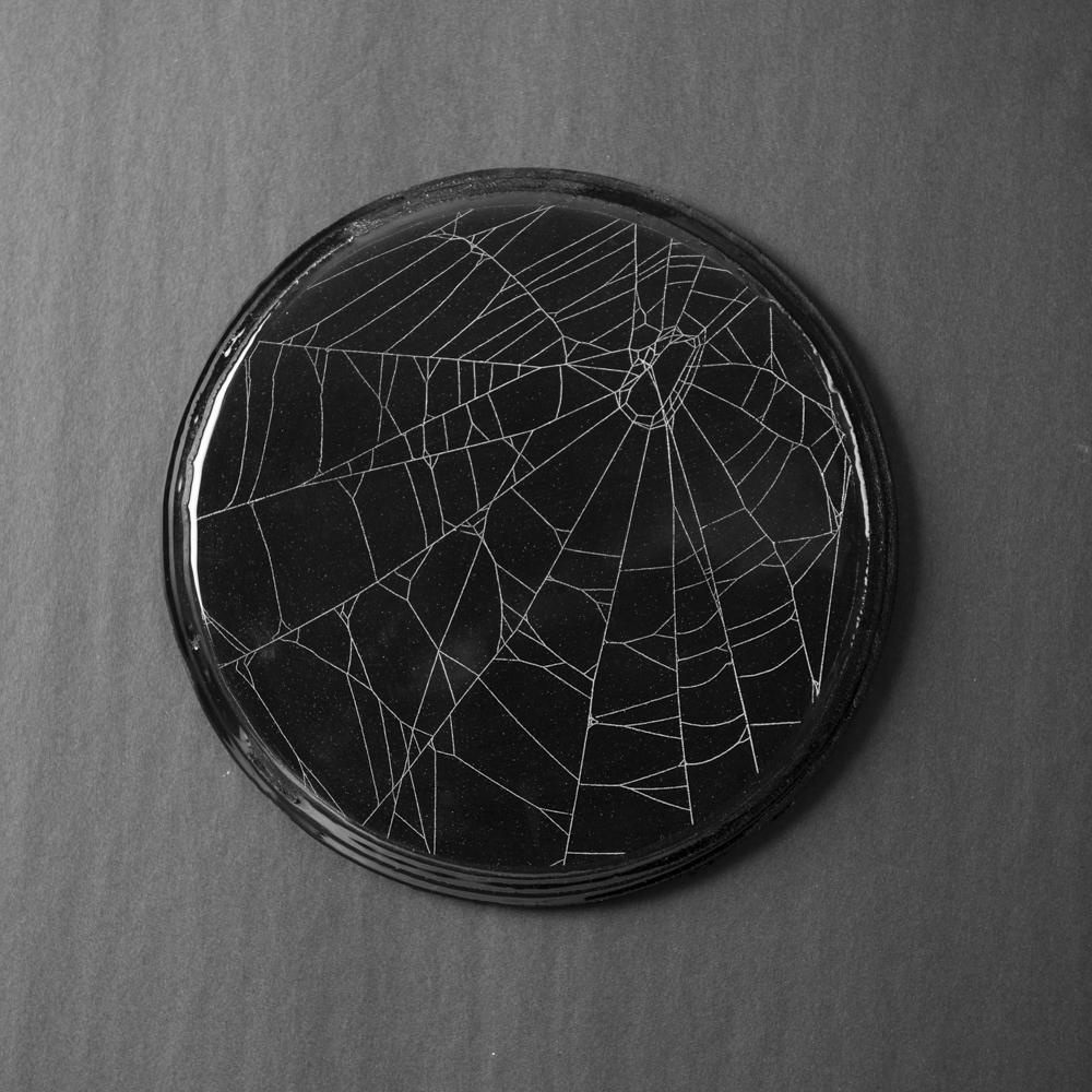 SpiderWeb_201907220004.jpg