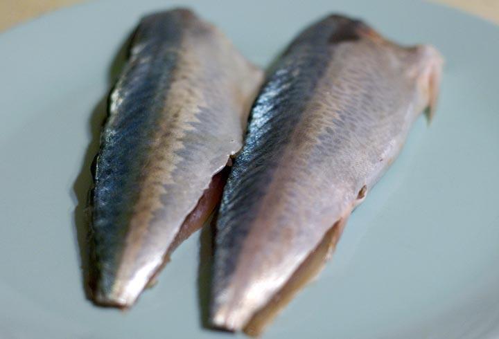 pescado1.jpg