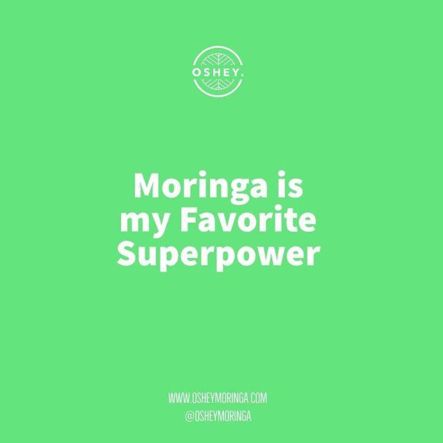 On vous conseille de consommer différents superaliments, de consommer des probiotiques, de consommer des compléments naturels et vitamines, cela ne peut que vous faire du bien. Notre moringa @osheymoringa est sur le podium de ces superaliments, c'est notre superpower 💪🏿😁 #osheymoringa #greenvibesonly