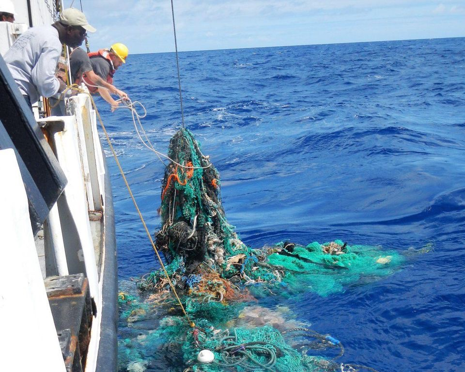 Plastic costs billions to abate - Everything suffers: tourism, recreation, business, the health of humans, animals, fish and birds – because of plastic pollution. The financial damage continuously being inflicted is inestimable.