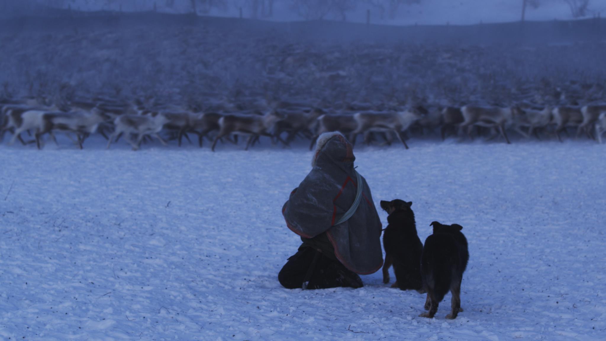 GUOĐOHIT - A unique encounter with a Sámi reindeer herding family.Director: Ken Are Bongo and Elle Márjá Eira Music: Morten H. Pettersen, Elle Márjá Eira Production: Kautokeino Film AS, Arctic Studios, Sahkkon Sound. Premiere was during the Tromsø International Film Festival 2013.