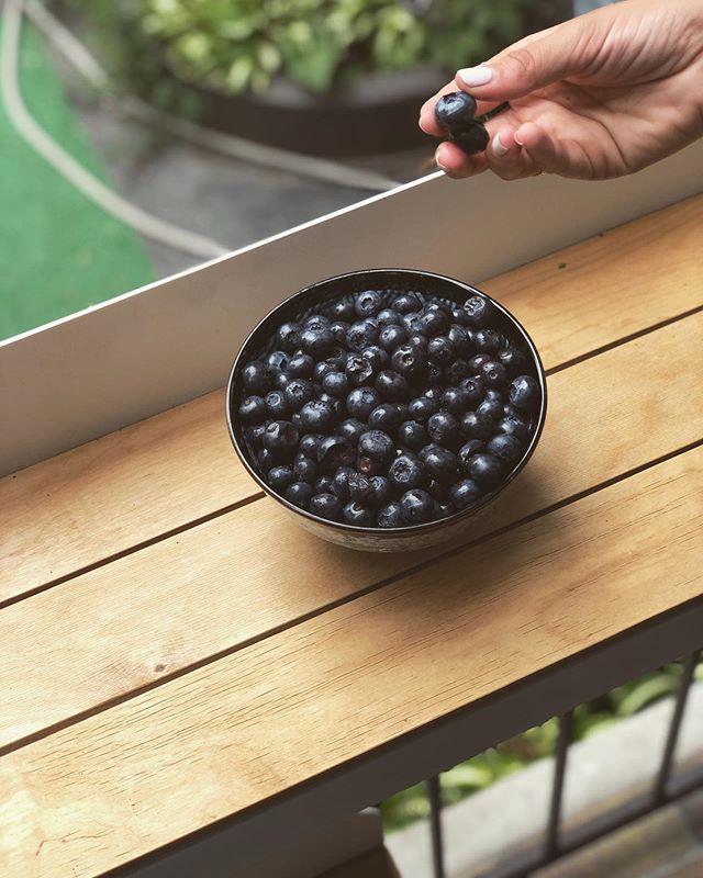 ☀️🍇🙌 • • • #bar #barbalcon #balcon #terasse #balcony #montreal #potd #jefaismtl #condo #brunch #coffee #standingdesk #design  #instagood #creative #decor #homedecor #backyard #home #patio #bbq #summer #beautiful #fun #plants #jevoismtl #rosepatrie #mtlmoments #mtl