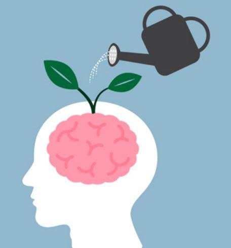 Brain Care.JPG