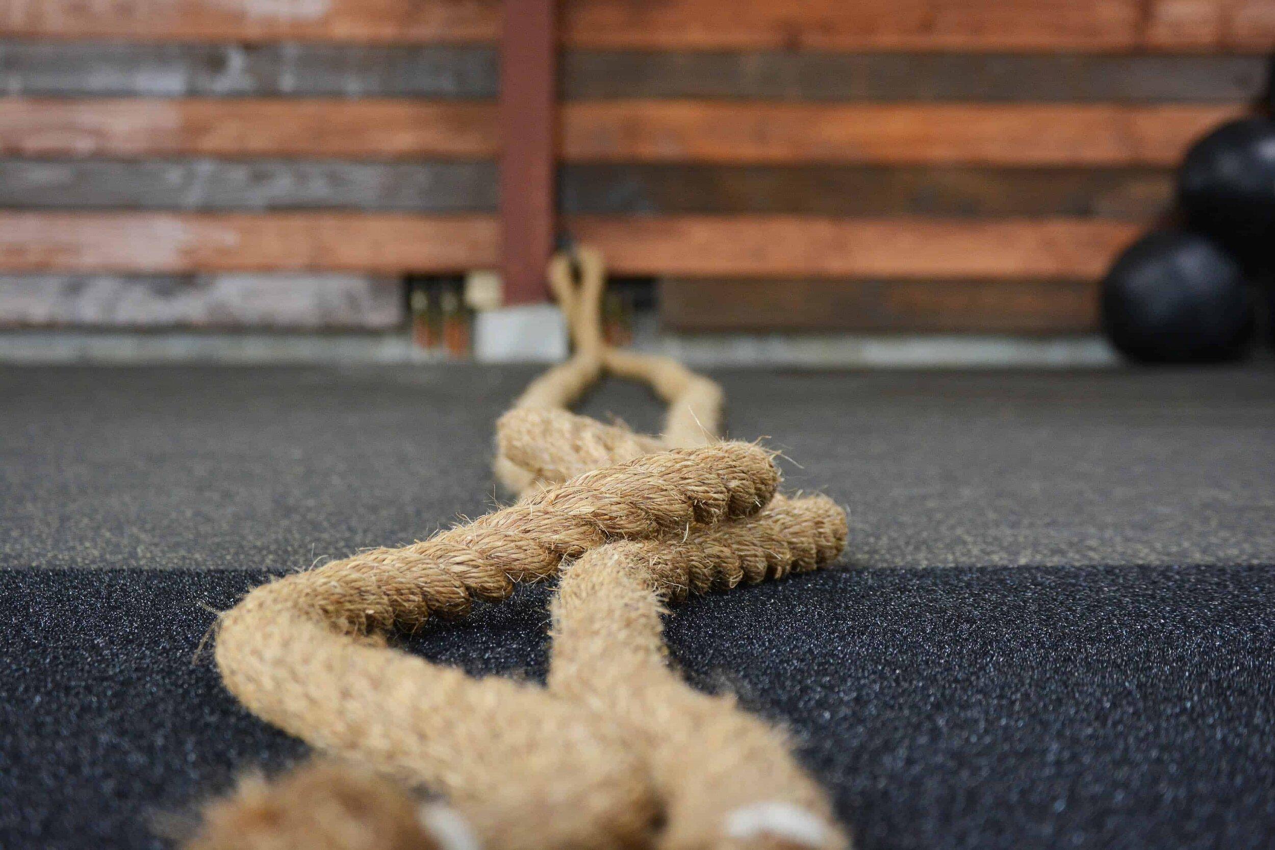 Canva - Gym Ropes _ Battle Ropes.jpg