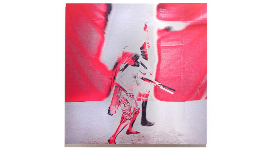 Zooper Dooper   2012, pigment on aluminium, 60cm x 60cm, private collection