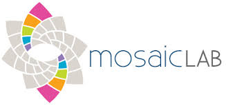 mosaic lab.jpeg