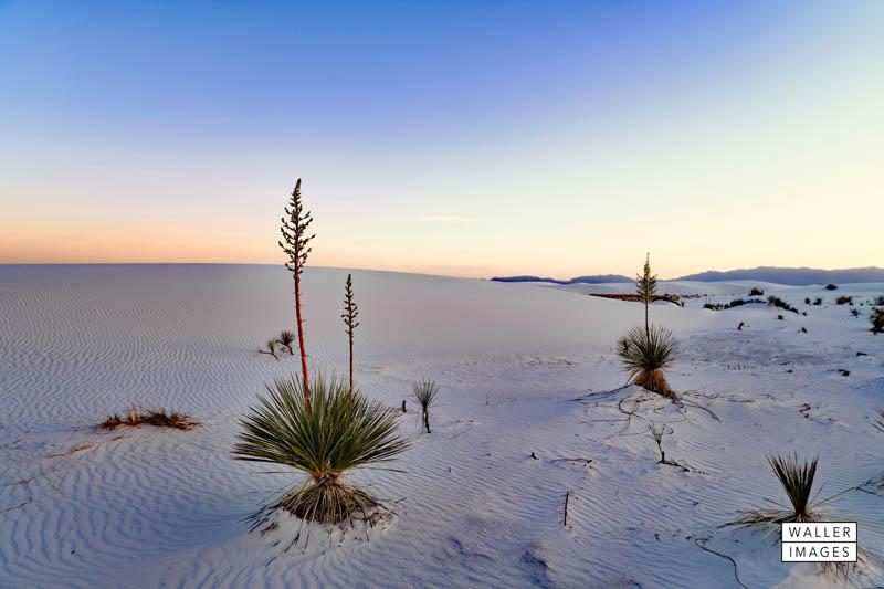 White Sands at dusk web.jpg