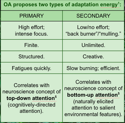 - A summary table of Schkade & Schultz' Occupational Adaptation Theoretical Constructs of Primary & Secondary Energy (We NEED to know when to use each to be efficient business owners!)