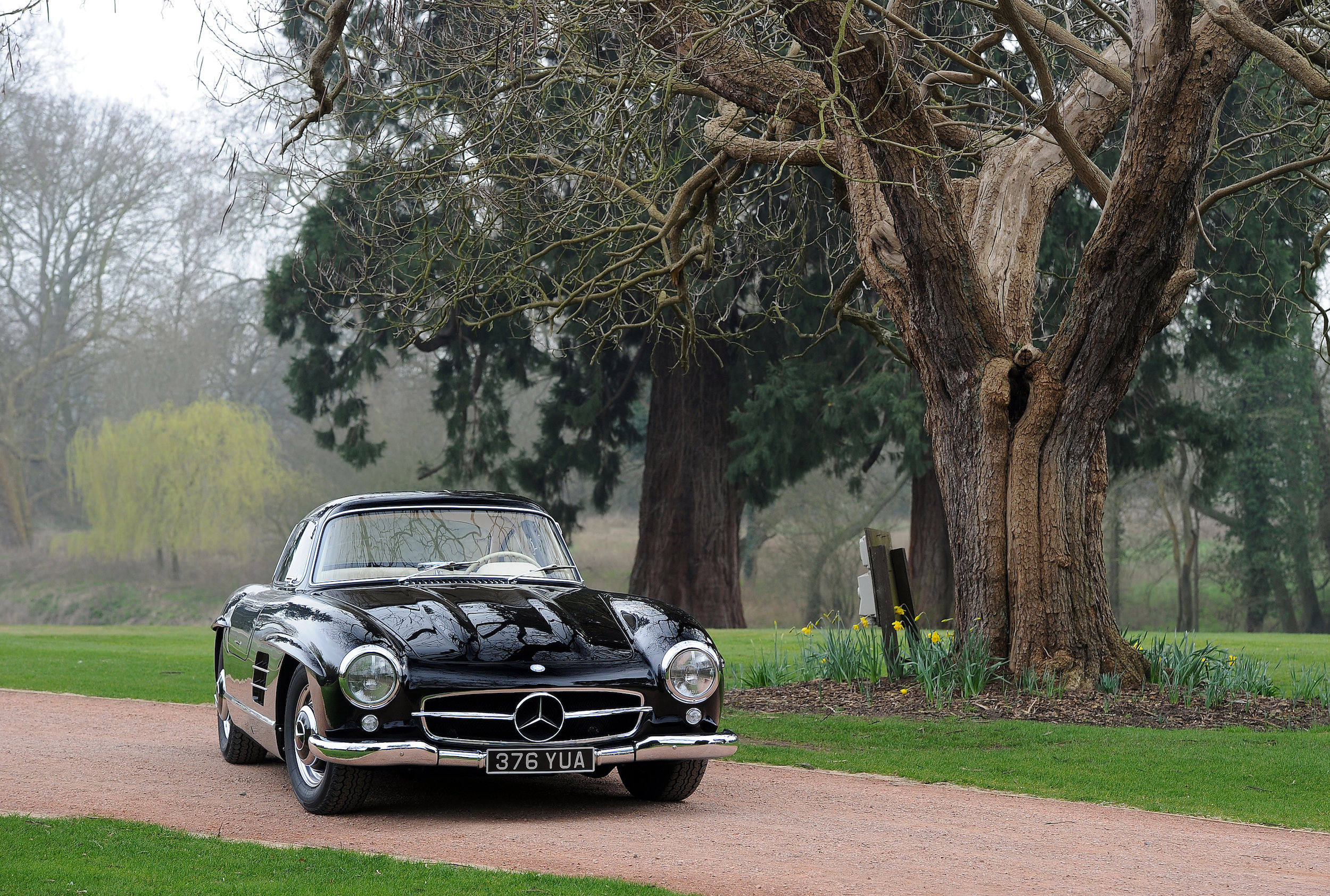 20 Merc 300SL Wide Tree.JPG