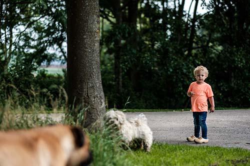 fotograaf noord holland