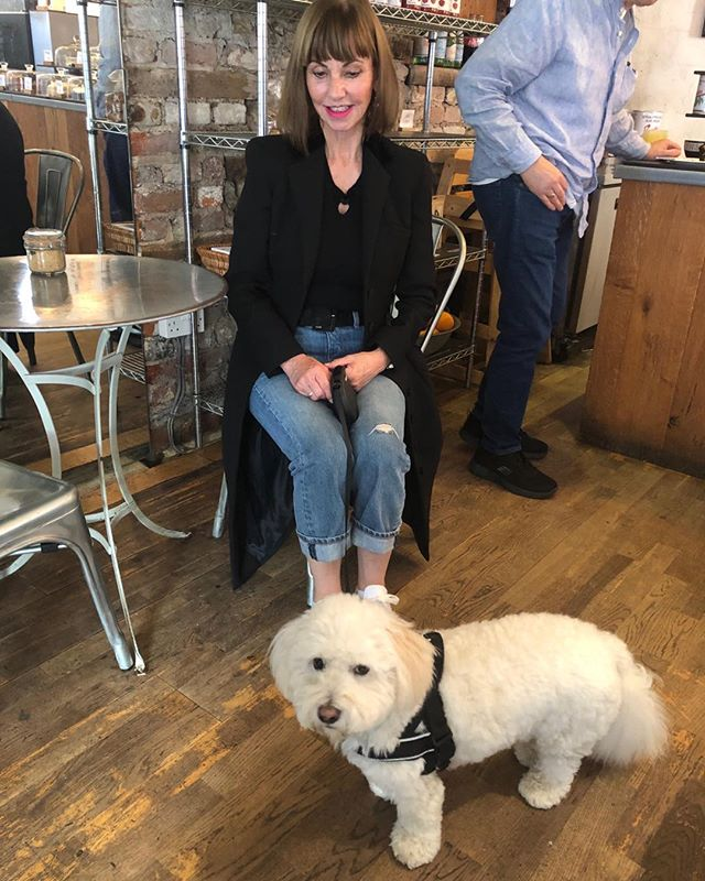 Billy Budd loves The Grocer Cafes#grocershops#amersham#coton de tulear#greatcoffer#greatfood#deliciouscakes#