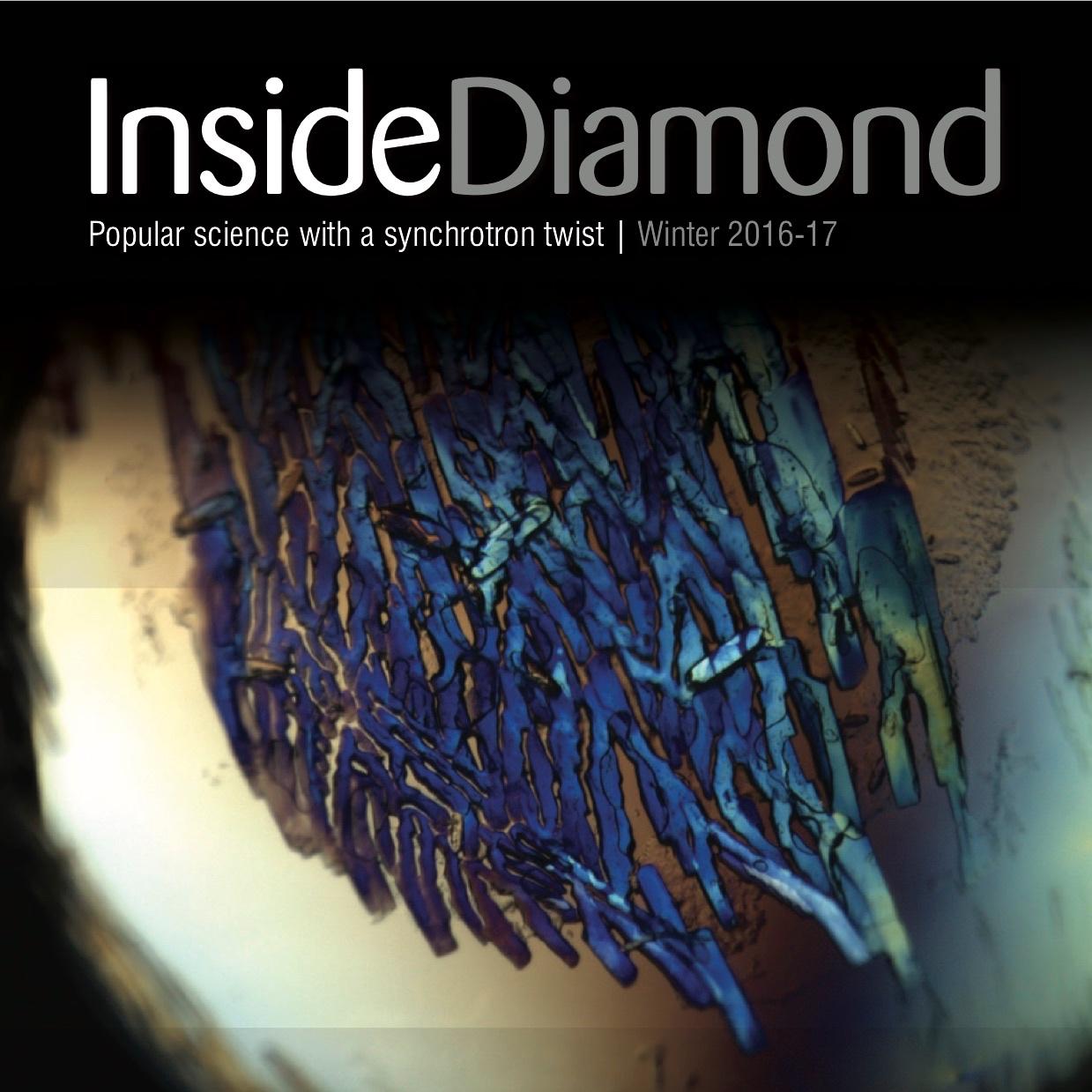 InsideDiamondWinter2016-17.jpg
