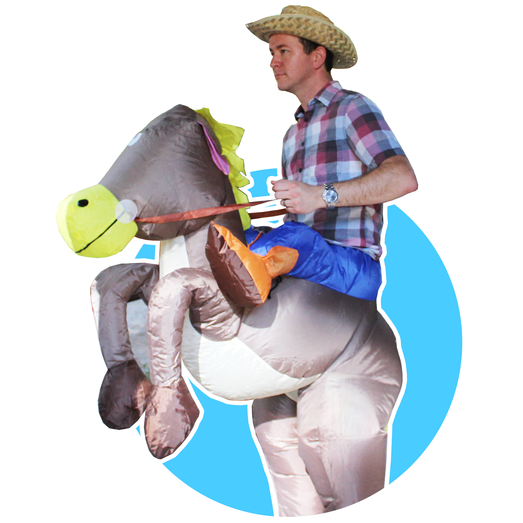 SCTC website custom graphics - bryan the horse.png