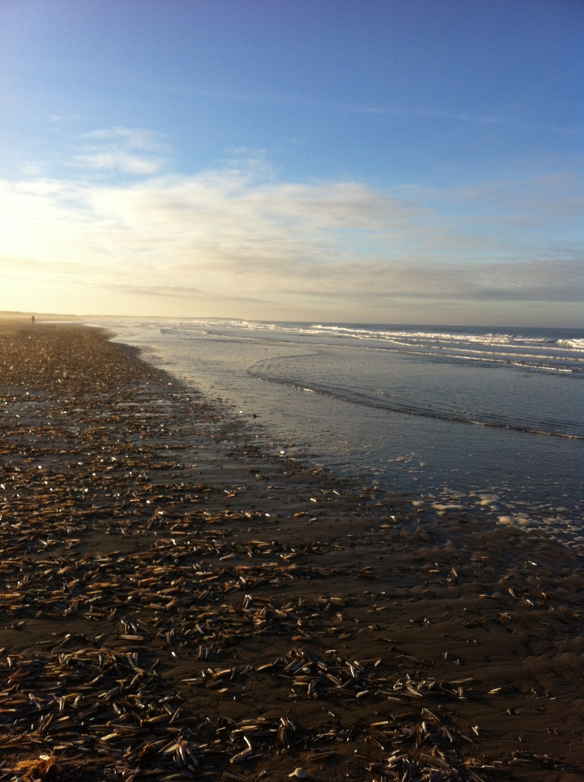 Beach Lovers -