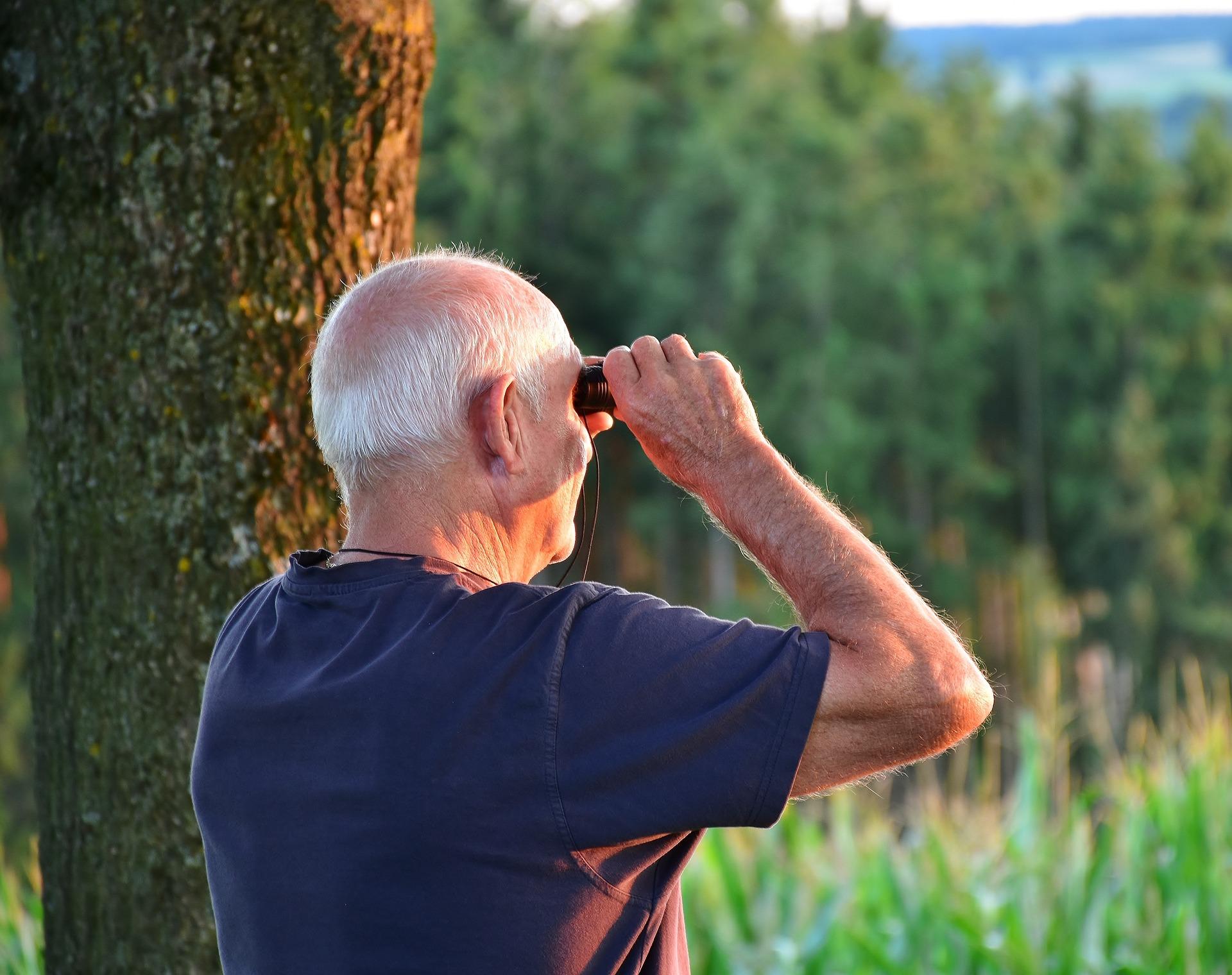 Bird Watching in Northern Michigan