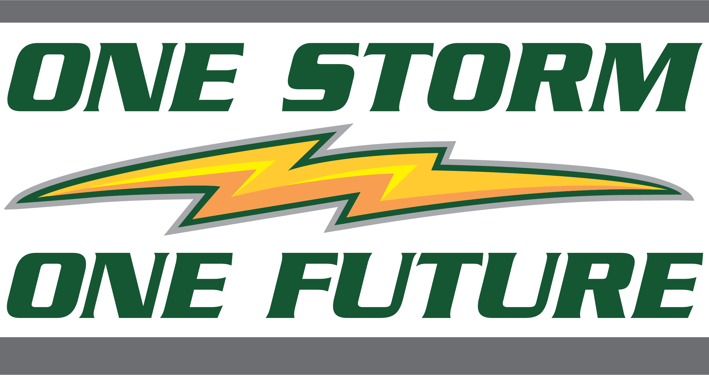 One Storm One Future Logo.png