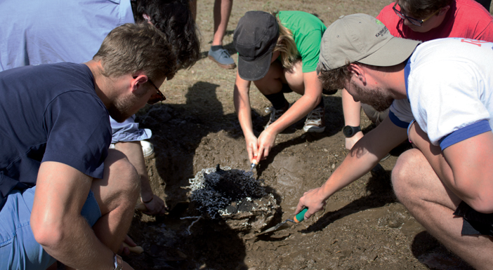 *Students carefully dig up anthill casting