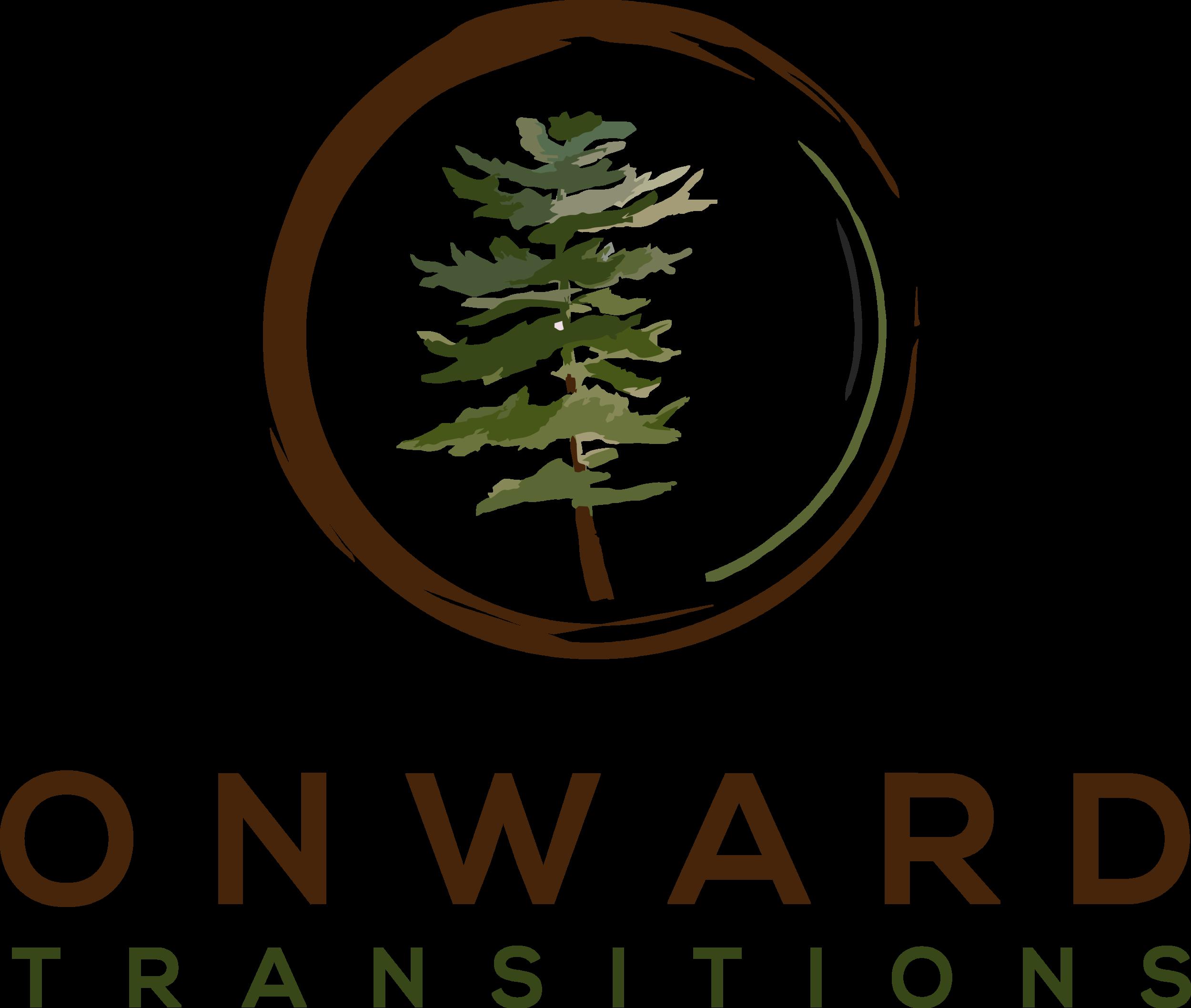 Onward Transitions (1).png