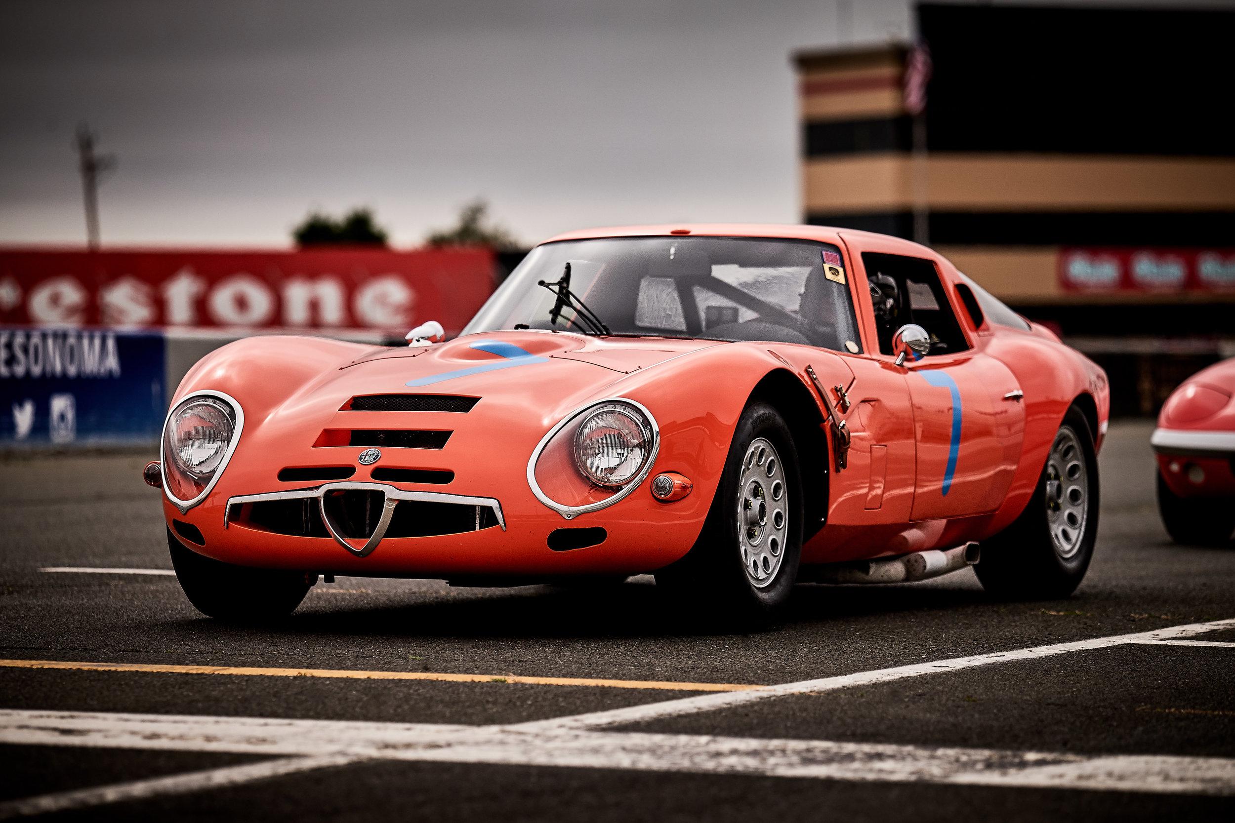 1965 Alfa Romeo TZ2 / Rob Walton