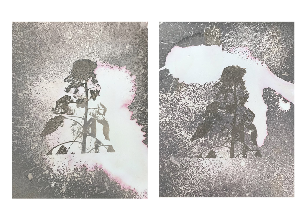 "Cosmic Universe III, IV- 24"" x 20"", silkscreened gel medium and salt crystals on unprocessed color photographic paper (2018)"