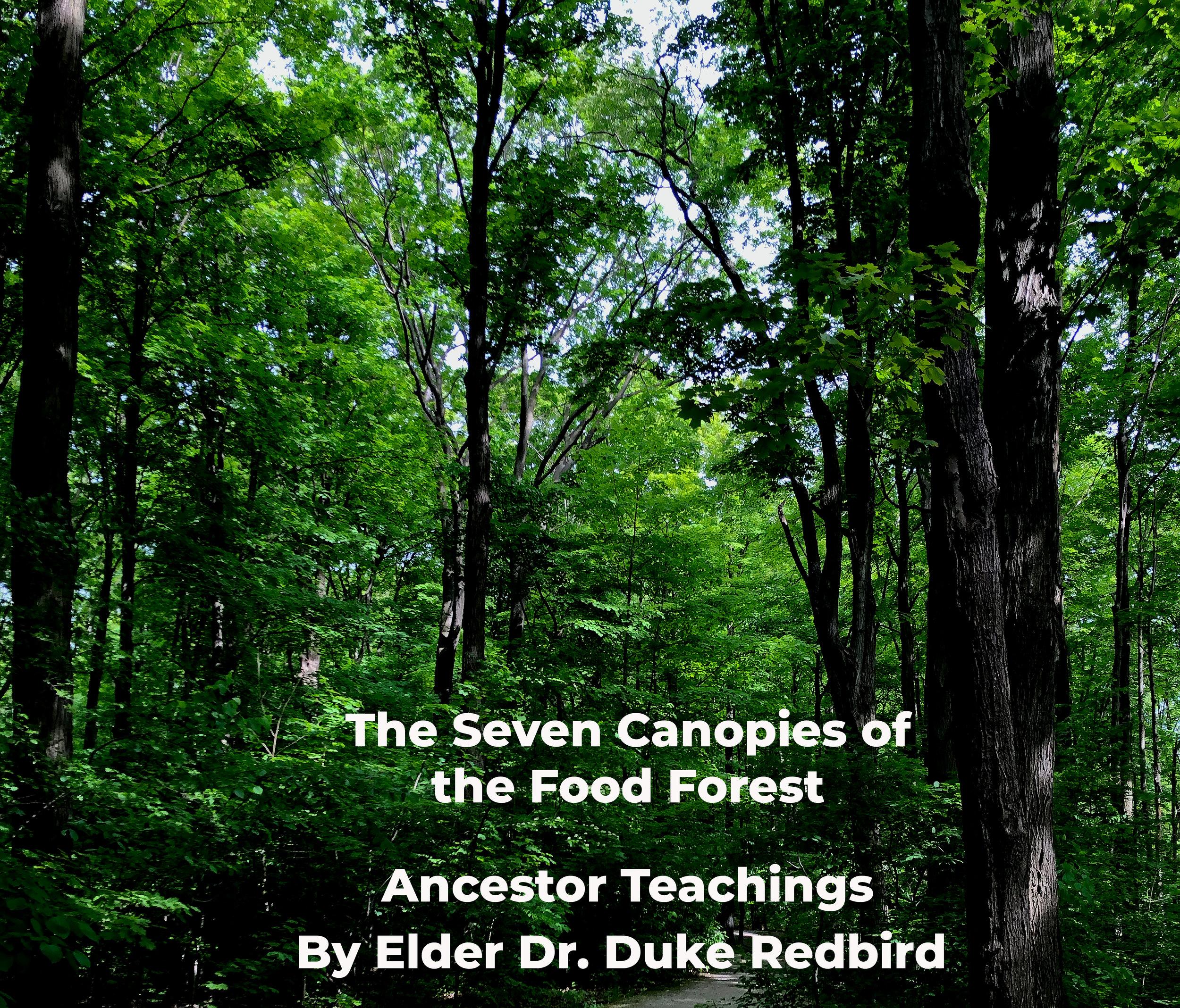 Food Forest Image.jpg