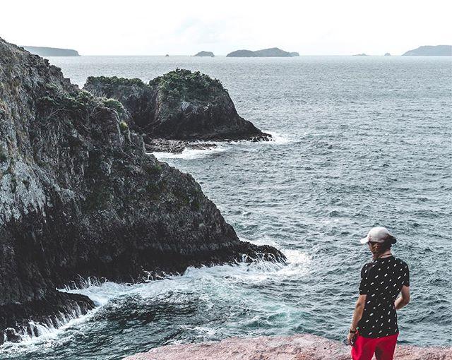 Im just here to make friends 🦆 • • • • • #coromandel #cliff #coastline #crayfishbay #birdsofinstagram #birdshots #discovernewzealand #getoutstayout #outdoortones #earth_shotz #Sony #Sonyalpha #bealpha #justgoshoot #capturenz #peoplescreatives #moodygrams #ig_landscape #lanscapecaptures #purenewzealand #splendid_earth #weroamnewzealand