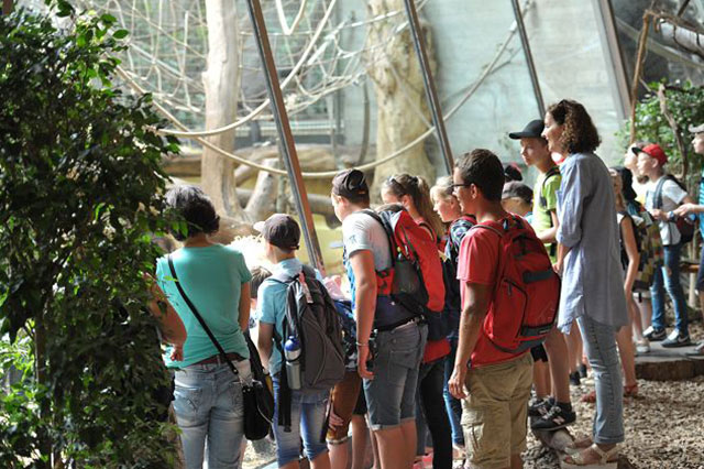 Tschernobyl-ausflug-zoo.jpg