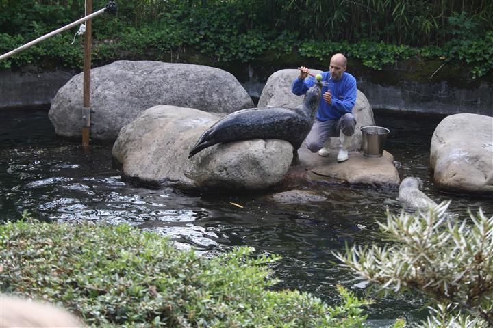 THH_2019-06-17 Zoo Zürich , FIFA Zürich - 04_1.JPG