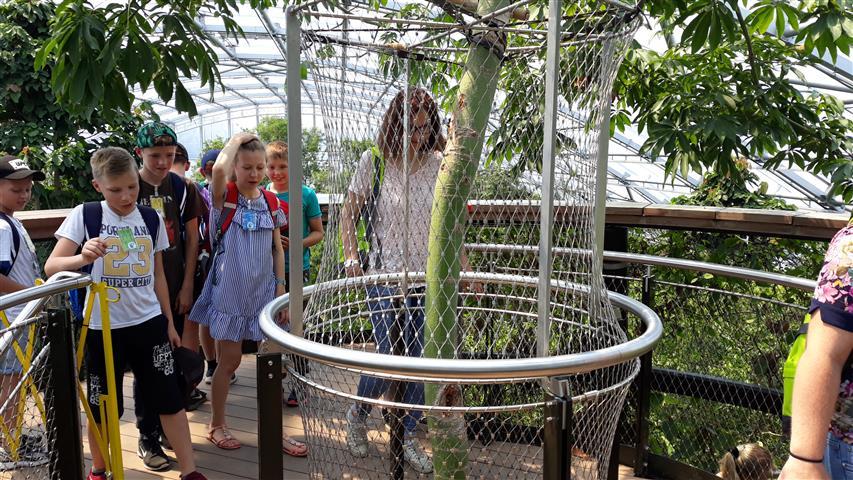 THH_2019-06-17 Zoo Zürich , FIFA Zürich - 13.jpg