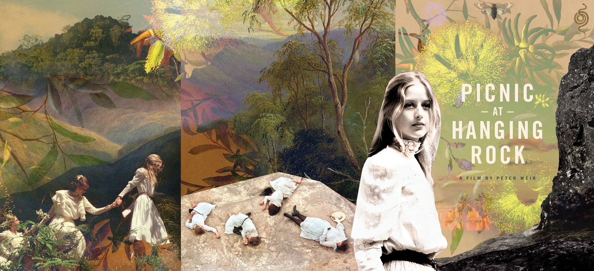 Artwork for the Collector's Edition DVD of  Picnic at Hanging Rock,  directed by Peter Weir, starring Anne Louise Lambert, Rachel Roberts, Jackie Weaver 1975